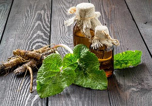 plantes et huiles essentielles Pharmacie Druon à Phalempin, Camphin-en-Carembault, Attiches